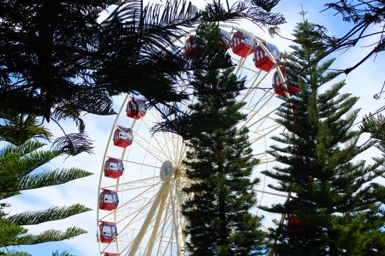 Slight Charm Fremantle Ferris Wheel