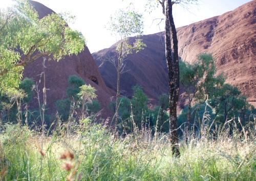 Slight Charm Uluru Walk 2